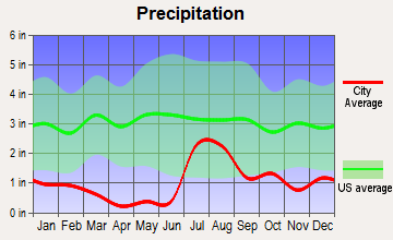Virden, New Mexico average precipitation