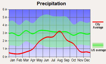 Texico, New Mexico average precipitation