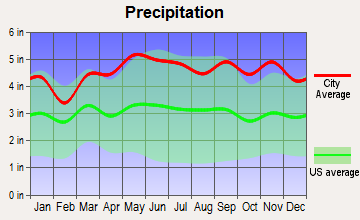 Denning, New York average precipitation