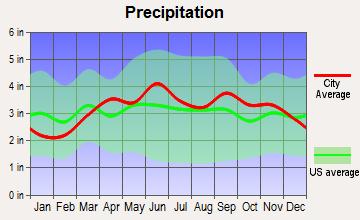 Endwell, New York average precipitation