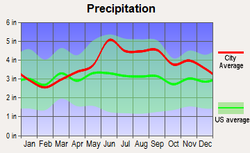 Falconer, New York average precipitation