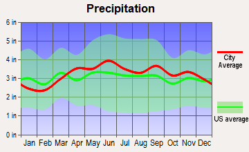 Johnson City, New York average precipitation