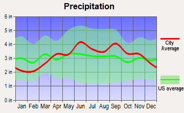 Lansing, New York average precipitation