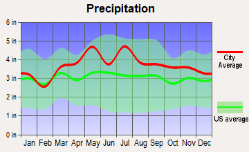 Red Oaks Mill, New York average precipitation