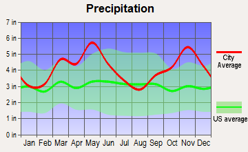 Dover, Arkansas average precipitation