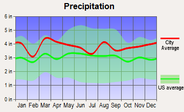 Selden, New York average precipitation