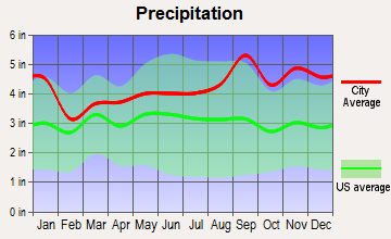Turin, New York average precipitation