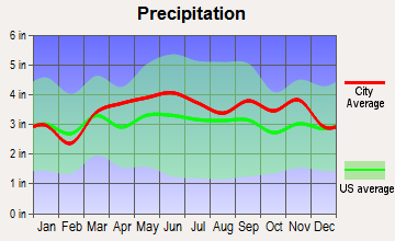 Berne, New York average precipitation