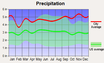 Arietta, New York average precipitation