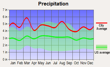 Barker Heights, North Carolina average precipitation
