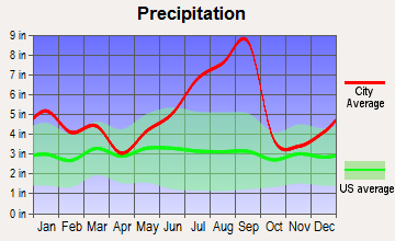 Boiling Spring Lakes, North Carolina average precipitation