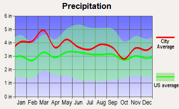Canton, North Carolina average precipitation