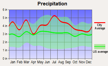 Carthage, North Carolina average precipitation