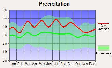 Danbury, North Carolina average precipitation