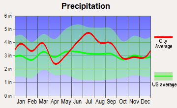 Gibson, North Carolina average precipitation