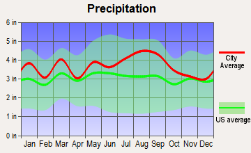 Henderson, North Carolina average precipitation