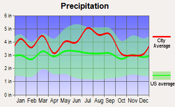 Micro, North Carolina average precipitation