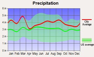 Pineville, North Carolina average precipitation