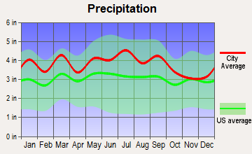 Sedalia, North Carolina average precipitation