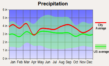 South Gastonia, North Carolina average precipitation