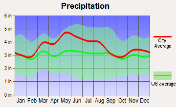 Bethel, Ohio average precipitation