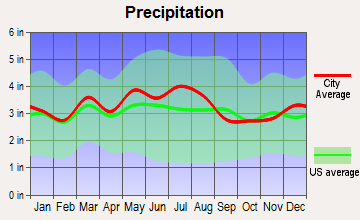 Franklin Furnace, Ohio average precipitation