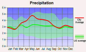 Lynchburg, Ohio average precipitation