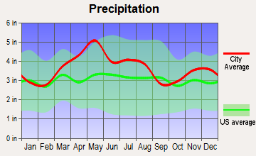 Pleasant Run Farm, Ohio average precipitation