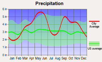 Wagoner, Oklahoma average precipitation