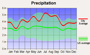 Village Shires, Pennsylvania average precipitation