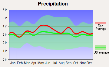 Wormleysburg, Pennsylvania average precipitation