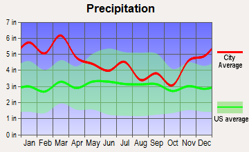 Hokes Bluff, Alabama average precipitation