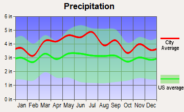 Spring Hill, Pennsylvania average precipitation