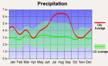 Bucksport, South Carolina average precipitation