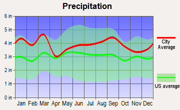 Clover, South Carolina average precipitation