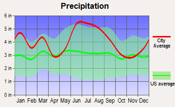 East Sumter, South Carolina average precipitation