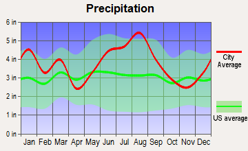 Elloree, South Carolina average precipitation
