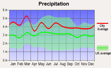 Five Forks, South Carolina average precipitation