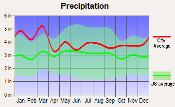 Gray Court, South Carolina average precipitation