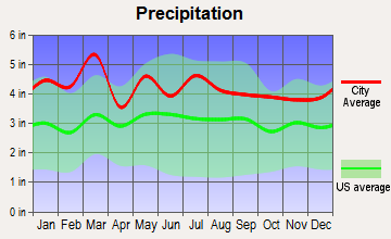 Greer, South Carolina average precipitation