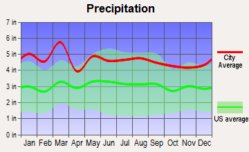 Inman, South Carolina average precipitation