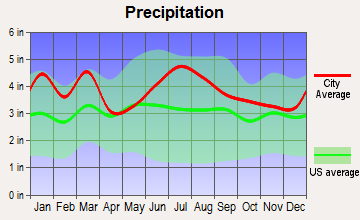 Lancaster, South Carolina average precipitation