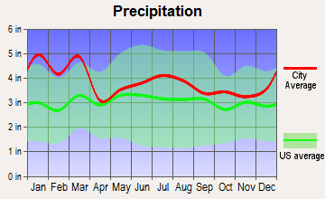 McCormick, South Carolina average precipitation