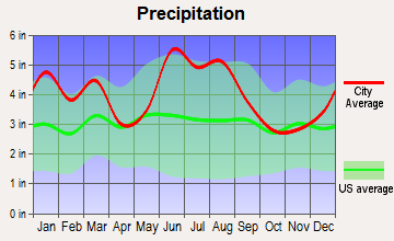 Snelling, South Carolina average precipitation