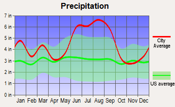 Summerville, South Carolina average precipitation