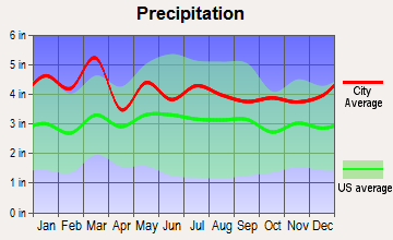 Wellford, South Carolina average precipitation