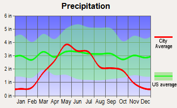 Winner, South Dakota average precipitation