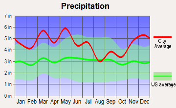 Decaturville, Tennessee average precipitation