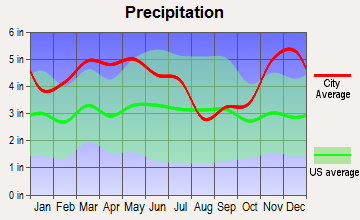 Friendship, Tennessee average precipitation