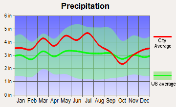 Greeneville, Tennessee average precipitation